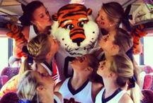 Aubie / Often Imitated, Never Duplicated. Eight time UCA National Champion & Hall of Famer.  / by Auburn Athletics
