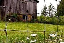 Old Barns & Buildings / by Judy Fuller