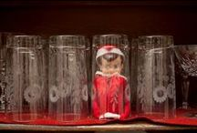 Elf on the Shelf / by Cassidy DeGrote Almquist