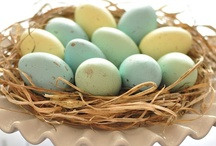 Easter and Spring Ideas / by Mindy Cone - CREATIVE JUICE