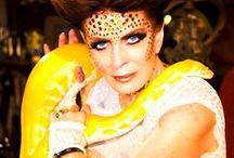 Snakes / Deborah Lindquist Snake Infused Fashion. Plus styling ideas we love. / by Deborah Lindquist