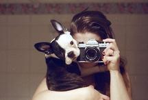 Smile / by Katie Moosmann