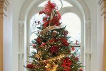 Christmas Trees / Christmas trees of all kinds / by Cindy B.