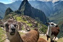 South America & Central America Travel / by TravelAge West