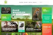 Web Design / Inspiration / Web Design Inpiration #web / by Tansu Iliyaz