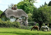 English Cottages / by Christy Toth-Smith