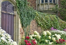 English Gardens / by Christy Toth-Smith