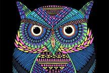 owls / by jessbrooklynluv