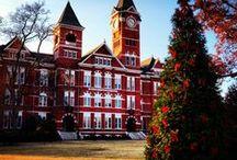 INSPIRE | Holidays / by The Hotel at Auburn University