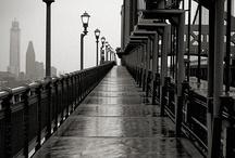 Bridge / by Martha Hopkins Skarlinski