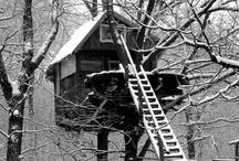 Treehouse / by Martha Hopkins Skarlinski