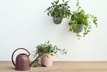Something for the House / by Julia Chestnut&Sage