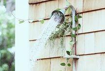 Gardening / by Julia Chestnut&Sage