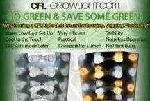 CFL Growlight.com / by Cind Cross