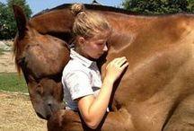 Horsey Things / by AbbeyBeast
