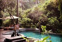 Bali / by Noel Murphy