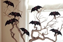 Halloween / by Sara Rosetta