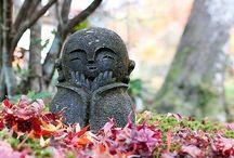 Japan / by Whitney Mosloski