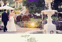 Weddings / by Madrona Manor
