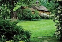 Landscaping / by Beverly Shade