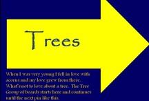 유 TREES / by jrachelle
