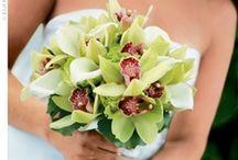 Wedding Flowers / by Kateřina Klímová