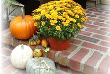 Autumn Splendor / by sweet serenity
