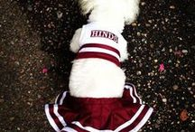 Maroon & White Style / by Hinds Community College