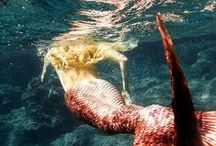 Mermaids / Dive down deep into the abyss for fun mermaid art.  / by Peter and the Starcatcher