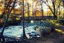 Missouri fishing / Fun trips to fish with my men!  / by Trini Antos