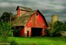 Barn Dance / by Holly Norris