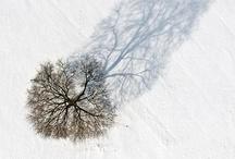 Artistic / by Peter Grondziowski