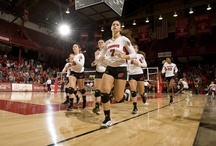 Badger Volleyball / Official news, photos and videos of University of Wisconsin Volleyball / by Wisconsin Athletics