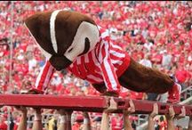Badger Football Gameday / Enjoy all the flavor of Badger Gameday in Madison. / by Wisconsin Athletics