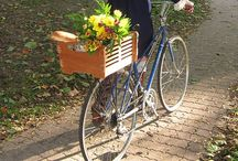 ..I want to ride.. / ..my bicycle.. / by Janina Curtis