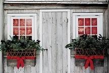 festive / by ashley schulz