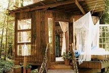 Backyard Cottages / by Carrie McDowell Hodge