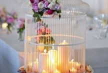 CAGES & COTES,, / Love these ...so many things you can do with them...PY... / by Pauline Yvonne West