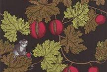 Wallpapers / by Katri Hyppänen