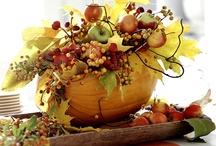 celebrate - autumn / by Daniele @ Domestic Serenity