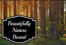 Nature & Landscapes / Fun pictures featuring nature, landscapes, or homes.  / by Susan Bewley