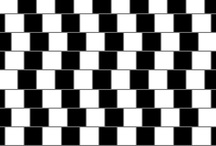 Optical Illusions / Test your brain (and patience) with these incredible optical illusions! / by Coastal.com