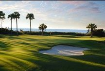 Hilton Head Golf Courses / Golf courses at Palmetto Dunes Oceanfront Resort - Robert Trent Jones, George Fazio, Arthur Hills / by Palmetto Dunes Oceanfront Resort