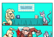 Cartoons / Fresh Dog Comics & Cartoons / by Fresh Dog