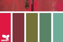 Colour / by Martin Birds