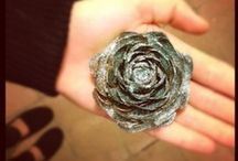 Craft Ideas / by Aimee Marie