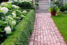 Landscaping Ideas / by Shaina R