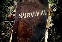 Survival /  Survival ~ Safety ~ Emergency / by Shannon Russ