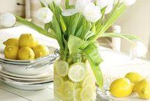 Luscious Lemon / by Shannon Russ