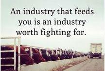 Agriculture / by Faith Schleich